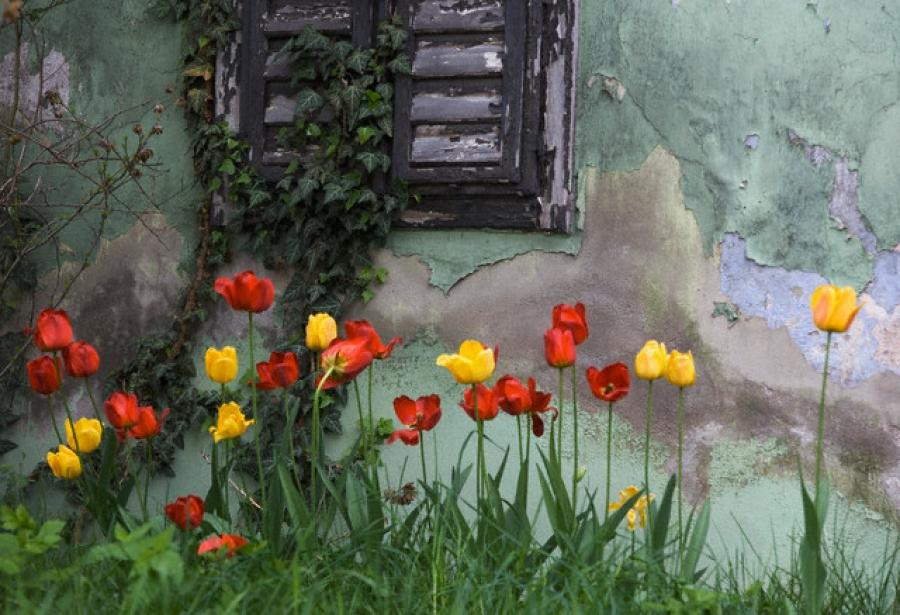 Способы борьбы с сыростью в жилом доме